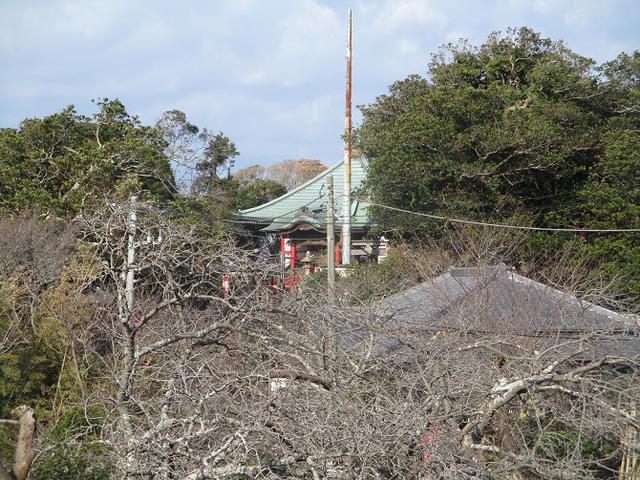 画像9: 2月の山旅会 三浦富士 の下見に行ってきました!