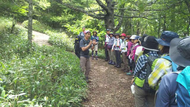画像: ガイドが歩き方や山の注意点などをレクチャーしてくれます