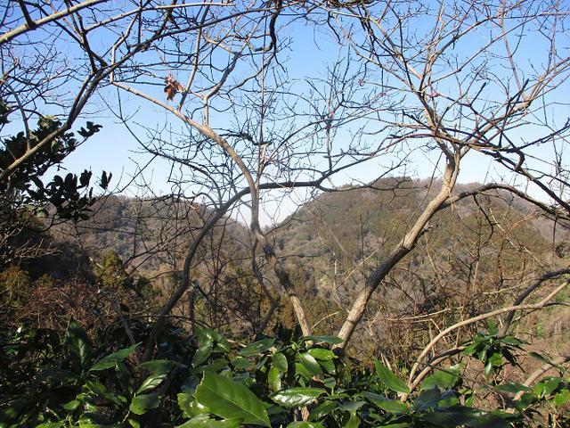 画像7: 2月8日に山旅会 田浦から乳頭山・観音塚 ツアーに行ってきました!