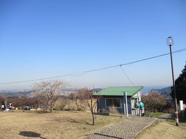 画像1: 2月8日に山旅会 田浦から乳頭山・観音塚 ツアーに行ってきました!