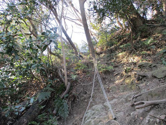画像5: 2月8日に山旅会 田浦から乳頭山・観音塚 ツアーに行ってきました!