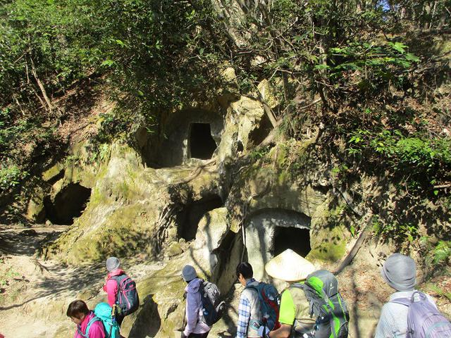 画像8: 2月10日に山旅会 高麗山 ツアーに行ってきました!