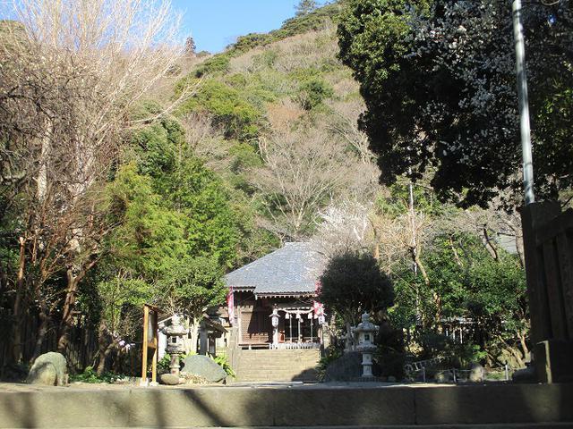 画像1: 2月10日に山旅会 高麗山 ツアーに行ってきました!
