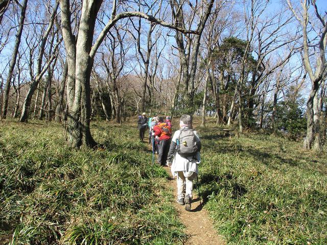 画像3: 2月10日に山旅会 高麗山 ツアーに行ってきました!