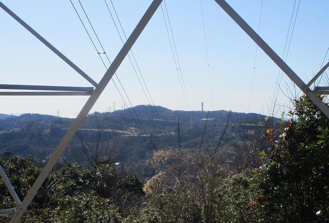 画像9: 先日、山旅会 仙元山から茅塚 ツアーの下見に行ってきました!