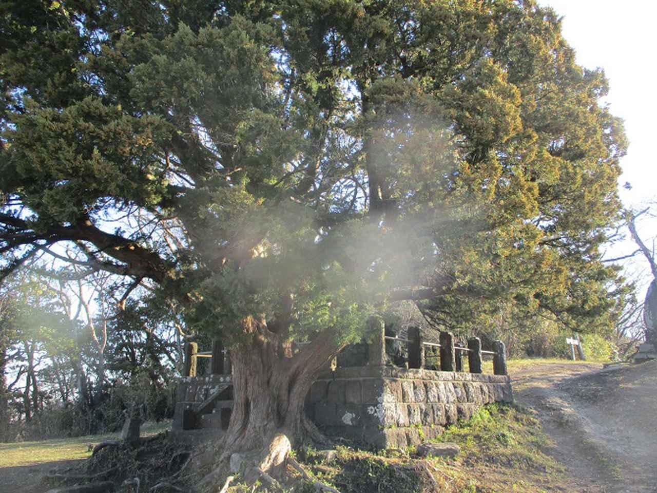 画像1: 先日、山旅会 仙元山から茅塚 ツアーの下見に行ってきました!