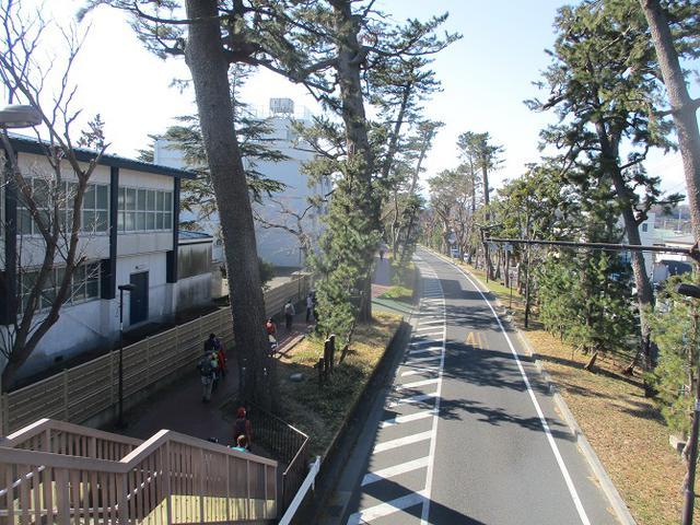 画像9: 2月10日に山旅会 高麗山 ツアーに行ってきました!