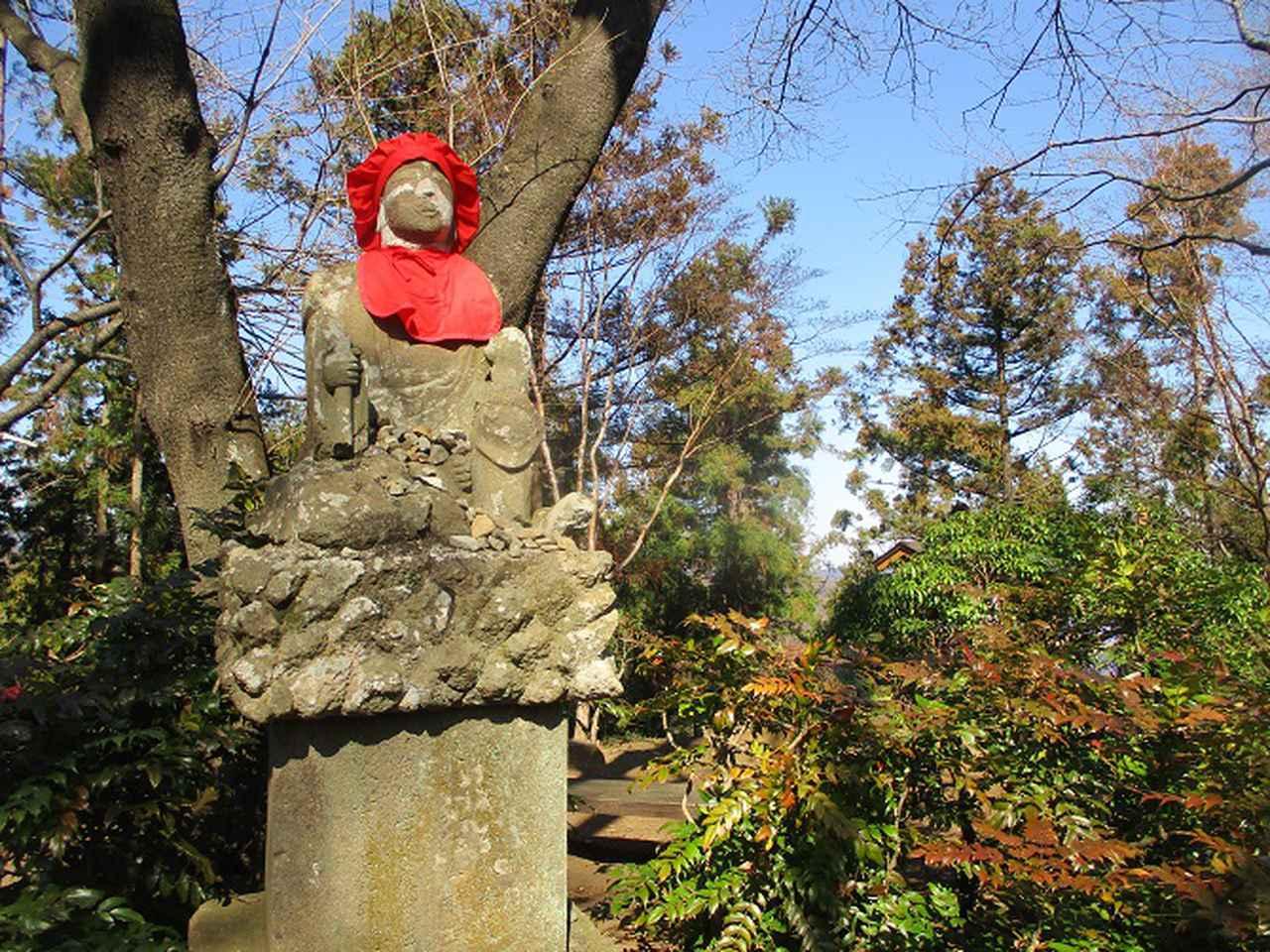 画像10: 2月5日に山旅会 丹沢白山 ツアーに行ってきました!