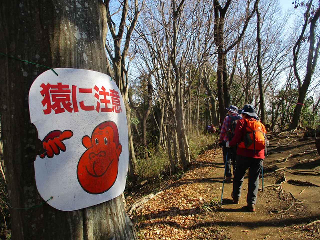 画像9: 2月5日に山旅会 丹沢白山 ツアーに行ってきました!