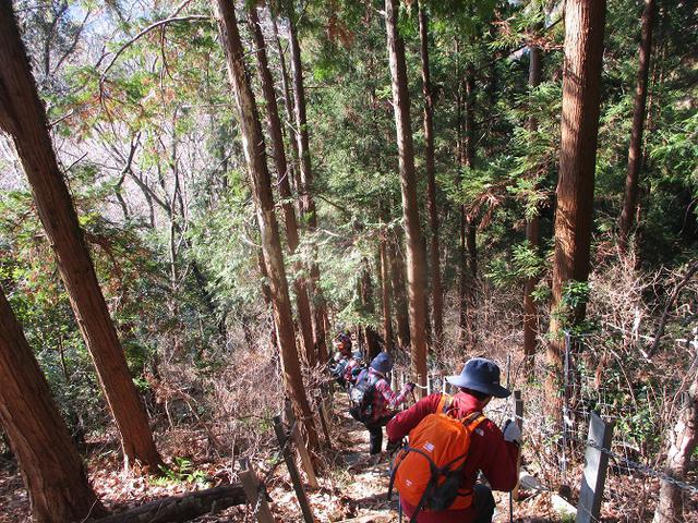 画像6: 2月5日に山旅会 丹沢白山 ツアーに行ってきました!