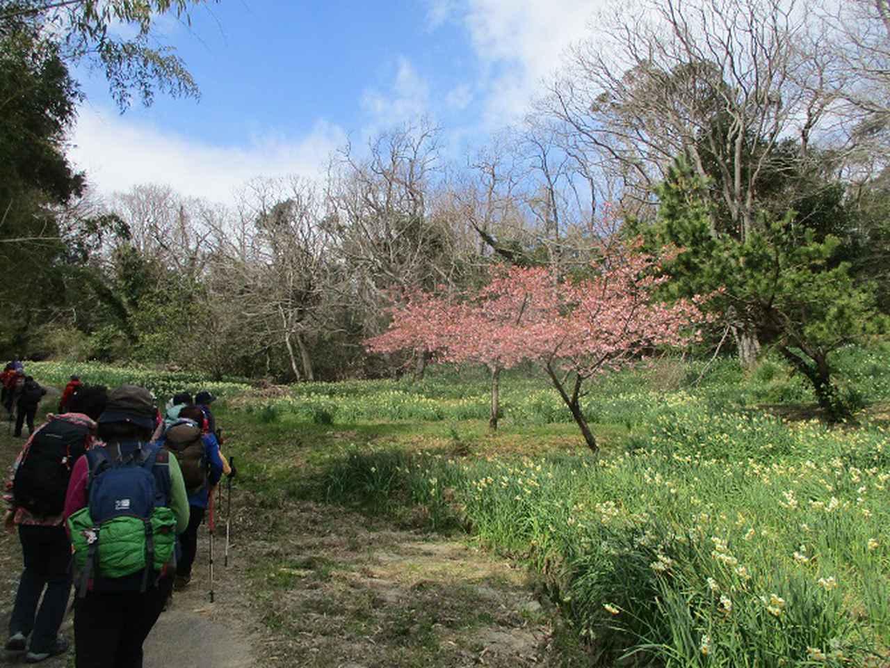 画像2: 山旅会ツアー3月までの催行状況のご案内です!