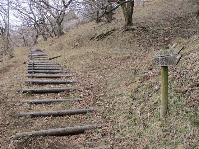 画像10: 来年冬の企画のネタを探して 松田山 に行ってきました!