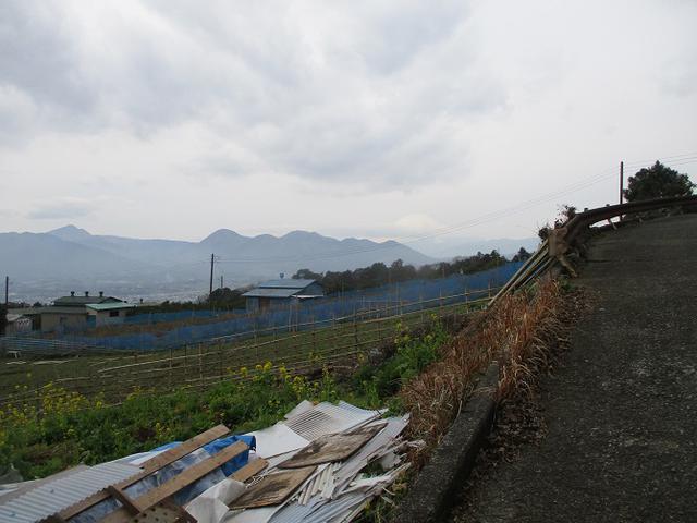 画像9: 来年冬の企画のネタを探して 松田山 に行ってきました!