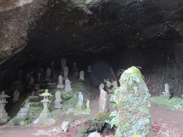画像7: 2月の山旅会 湯河原城山 の下見に行ってきました!
