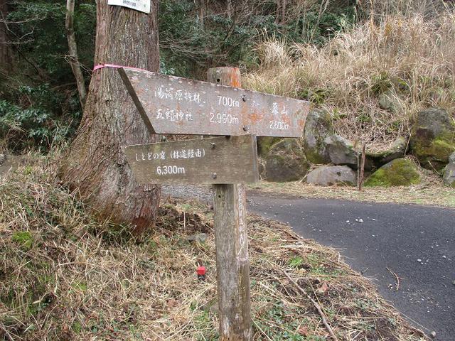 画像4: 2月の山旅会 湯河原城山 の下見に行ってきました!