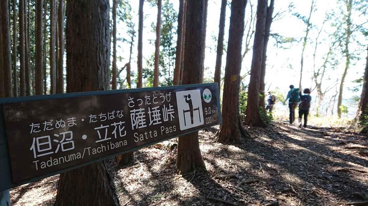 画像7: 2月11日に宮下ガイドのコースで 浜石岳 へ行って来ました♪