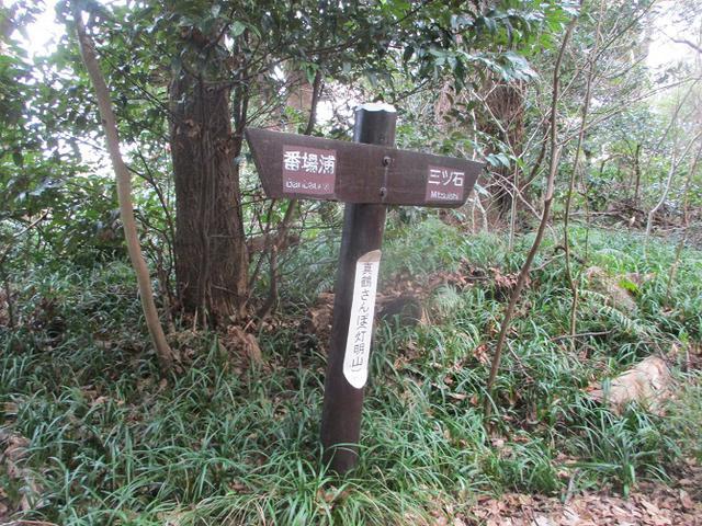 画像8: 2月の山旅会 真鶴半島ハイクと湯河原梅林 の下見に行ってきました!