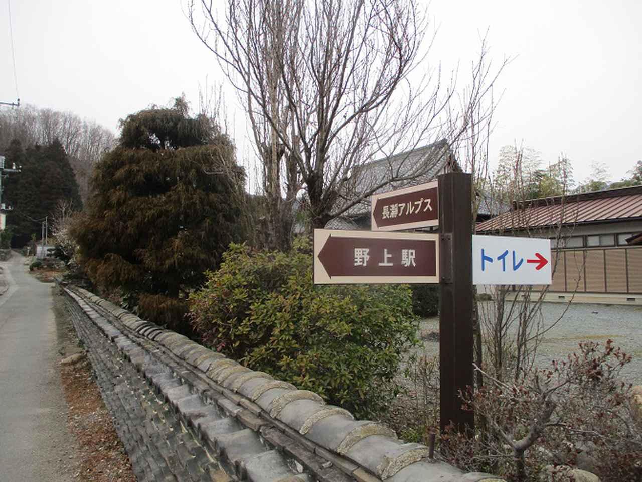 画像1: 来年冬の企画素材を探して長瀞アルプスを歩いてきました!