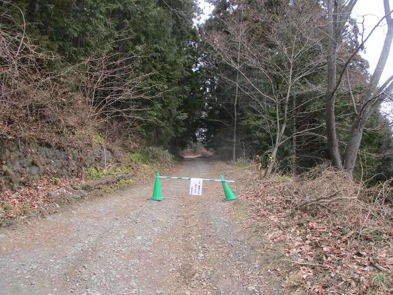 画像12: 来年冬の企画素材を探して長瀞アルプスを歩いてきました!