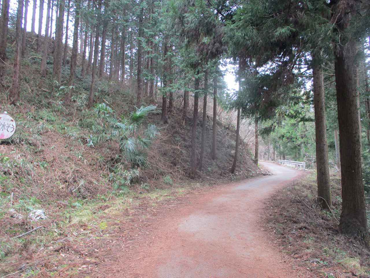 画像6: 来年冬の企画素材を探して長瀞アルプスを歩いてきました!