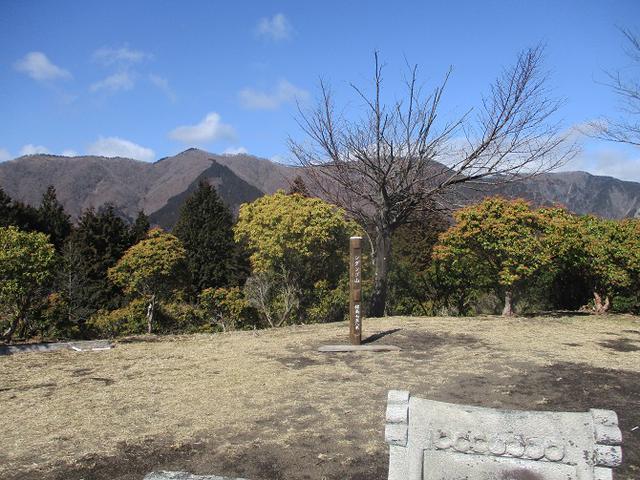 画像4: 2月17日に山旅会 シダンゴ山 ツアーにいってきました!