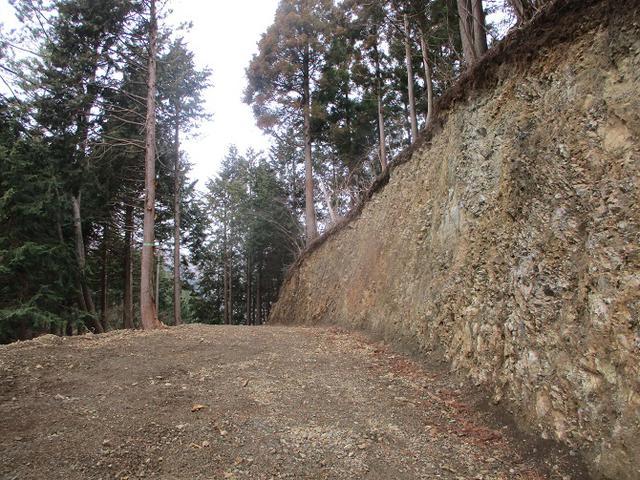 画像3: 2月17日に山旅会 シダンゴ山 ツアーにいってきました!