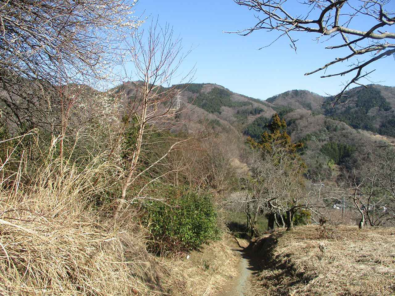 画像6: 2月17日に山旅会 シダンゴ山 ツアーにいってきました!