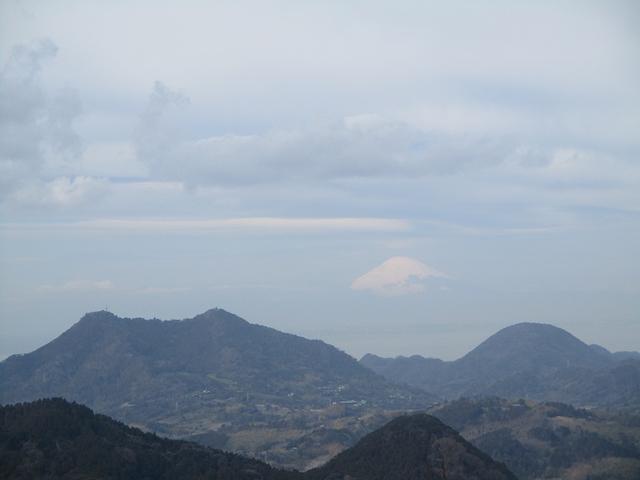 画像8: 2月12日に岡田ガイドのコースで千葉の 御殿山 へ行ってきました♪