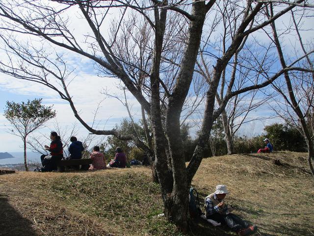 画像12: 2月12日に岡田ガイドのコースで千葉の 御殿山 へ行ってきました♪