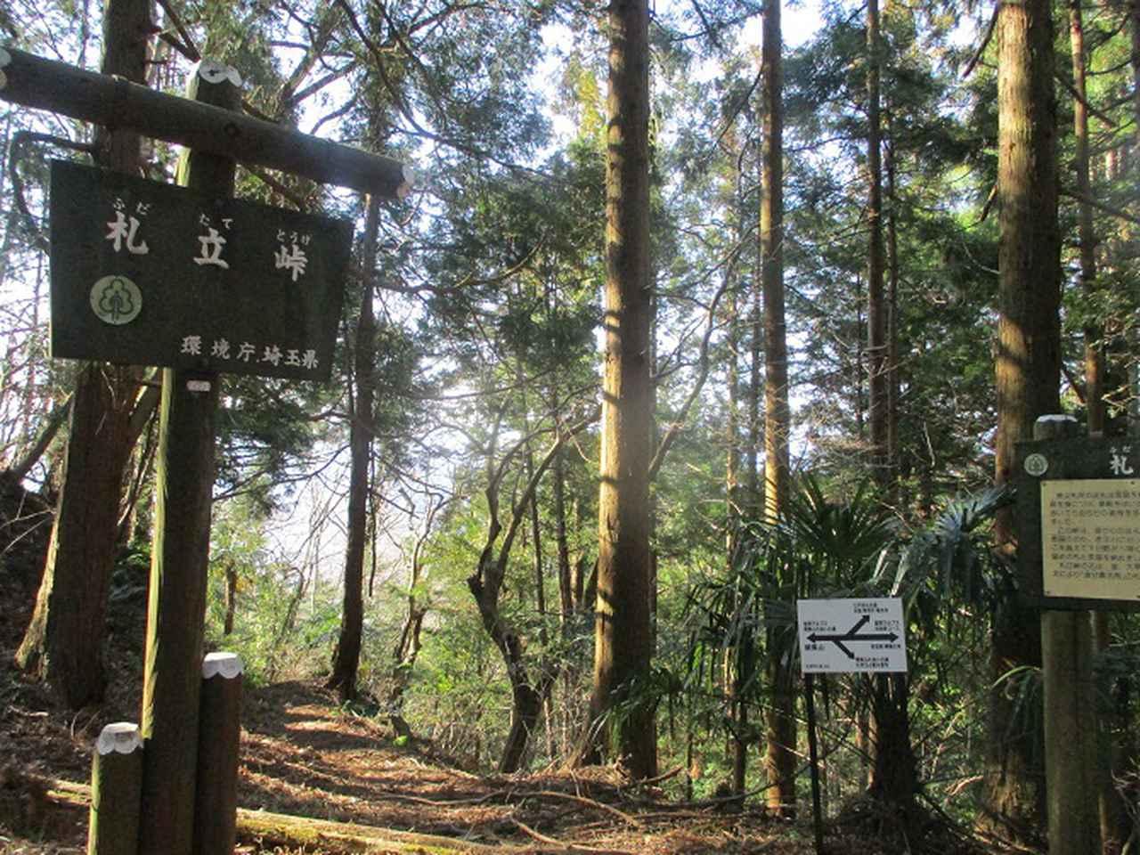 画像4: 3月の山旅会 秩父・破風山 の下見に行ってきました!