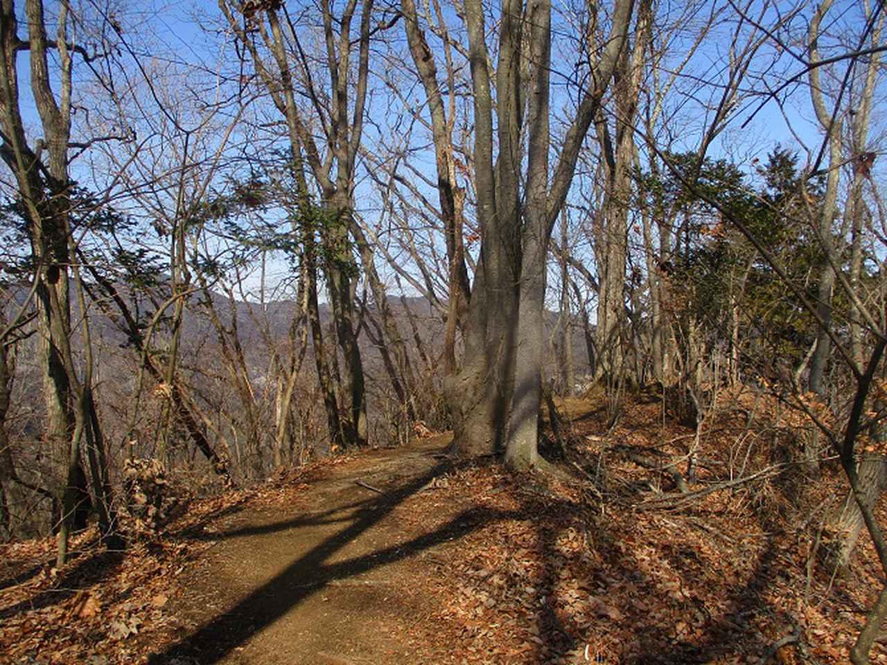 画像8: 3月の山旅会 秩父・破風山 の下見に行ってきました!