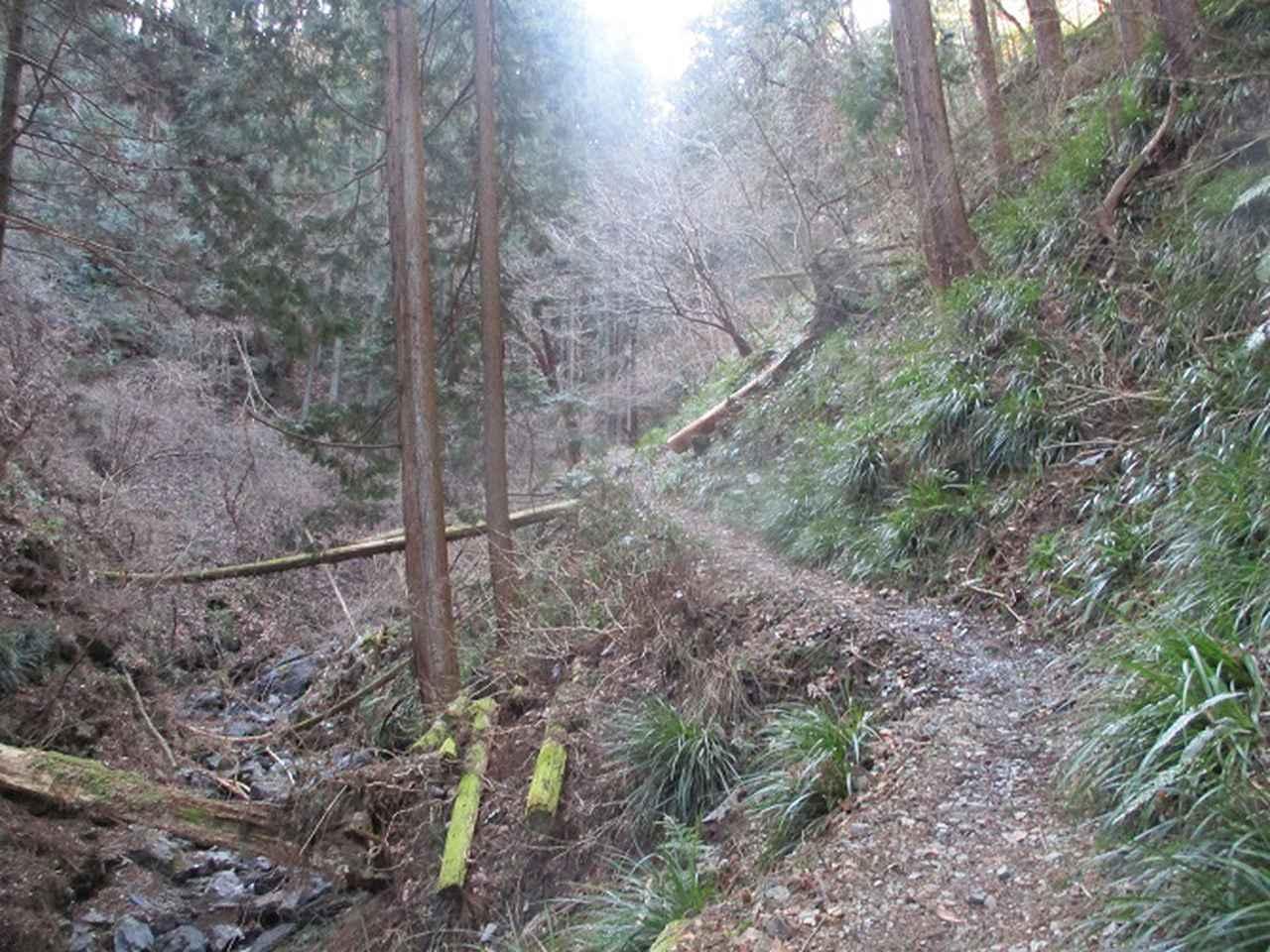 画像3: 3月の山旅会 秩父・破風山 の下見に行ってきました!