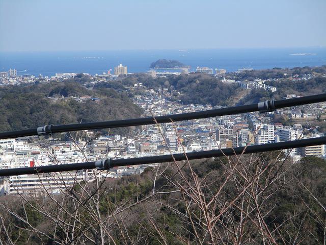 画像12: 3月の山旅会 大楠山から衣笠城跡 ツアーの下見に行ってきました!