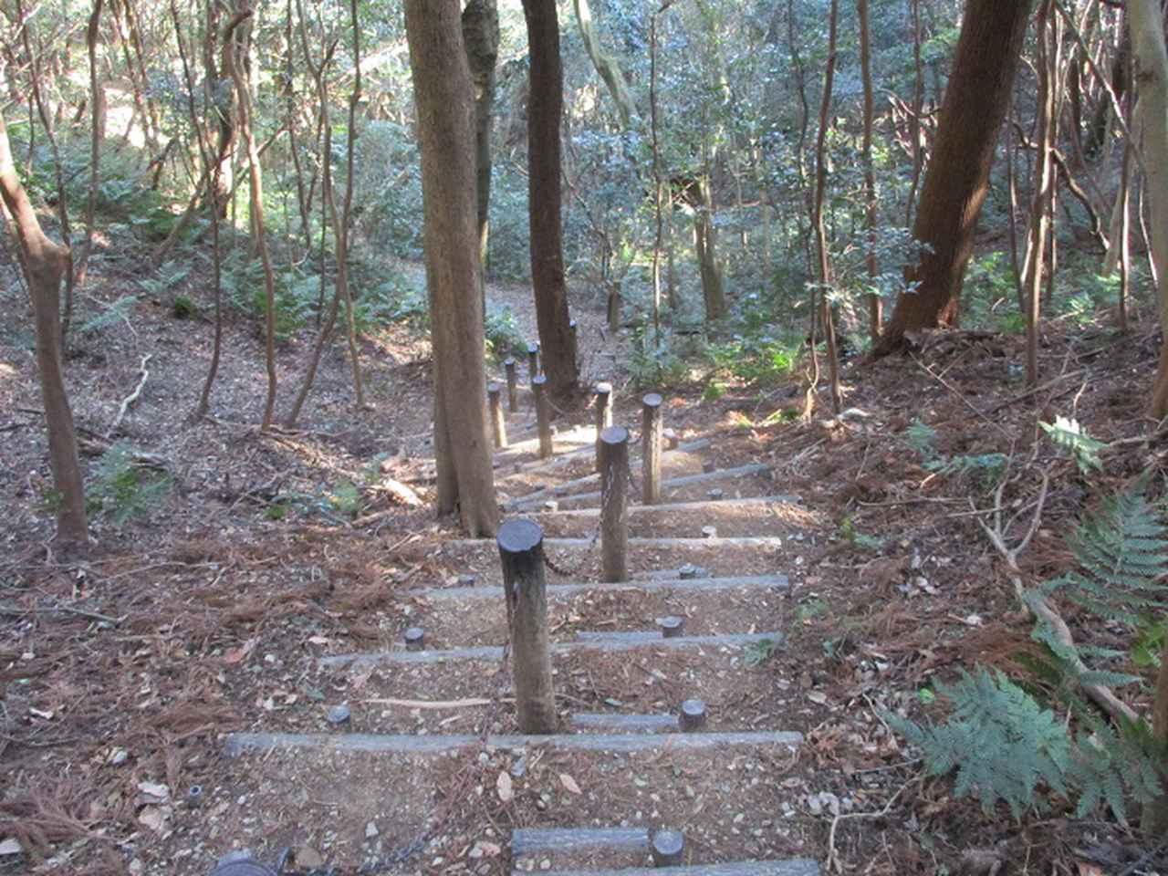 画像10: 3月の山旅会 神石山 の下見に行ってきました!