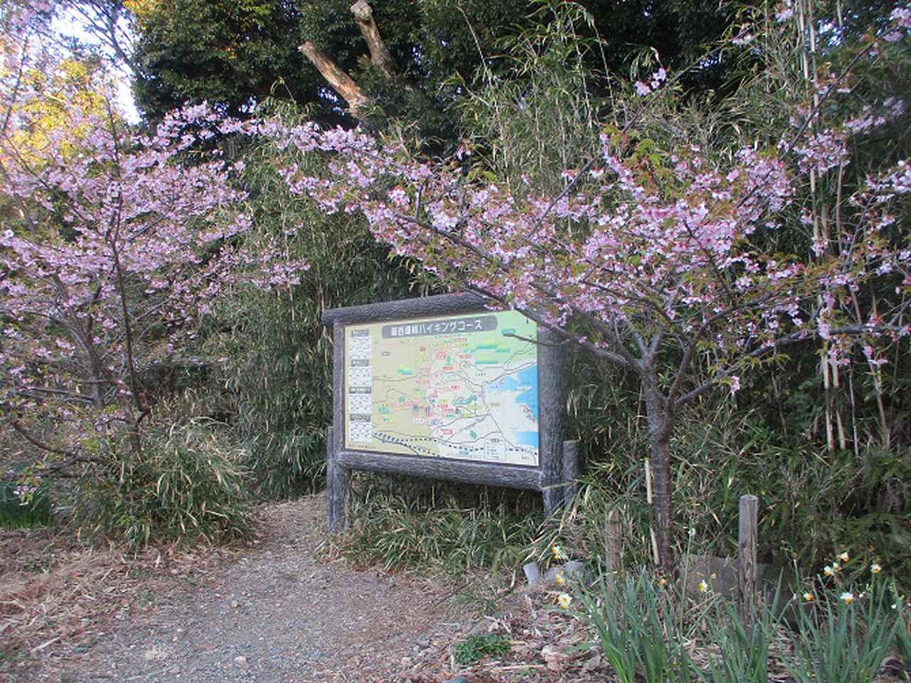 画像1: 3月の山旅会 神石山 の下見に行ってきました!