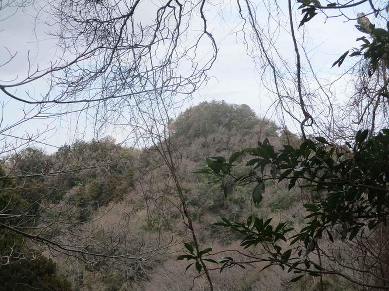 画像11: 2月22日に山旅会 仙元山から茅塚 ツアーに行ってきました!
