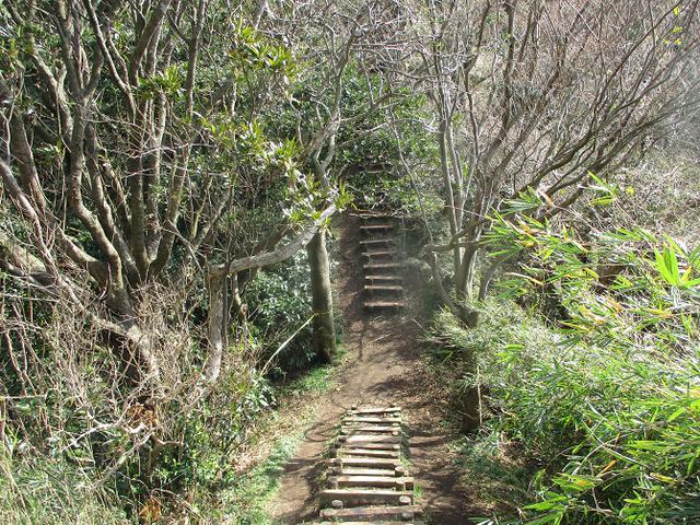 画像3: 2月22日に山旅会 仙元山から茅塚 ツアーに行ってきました!