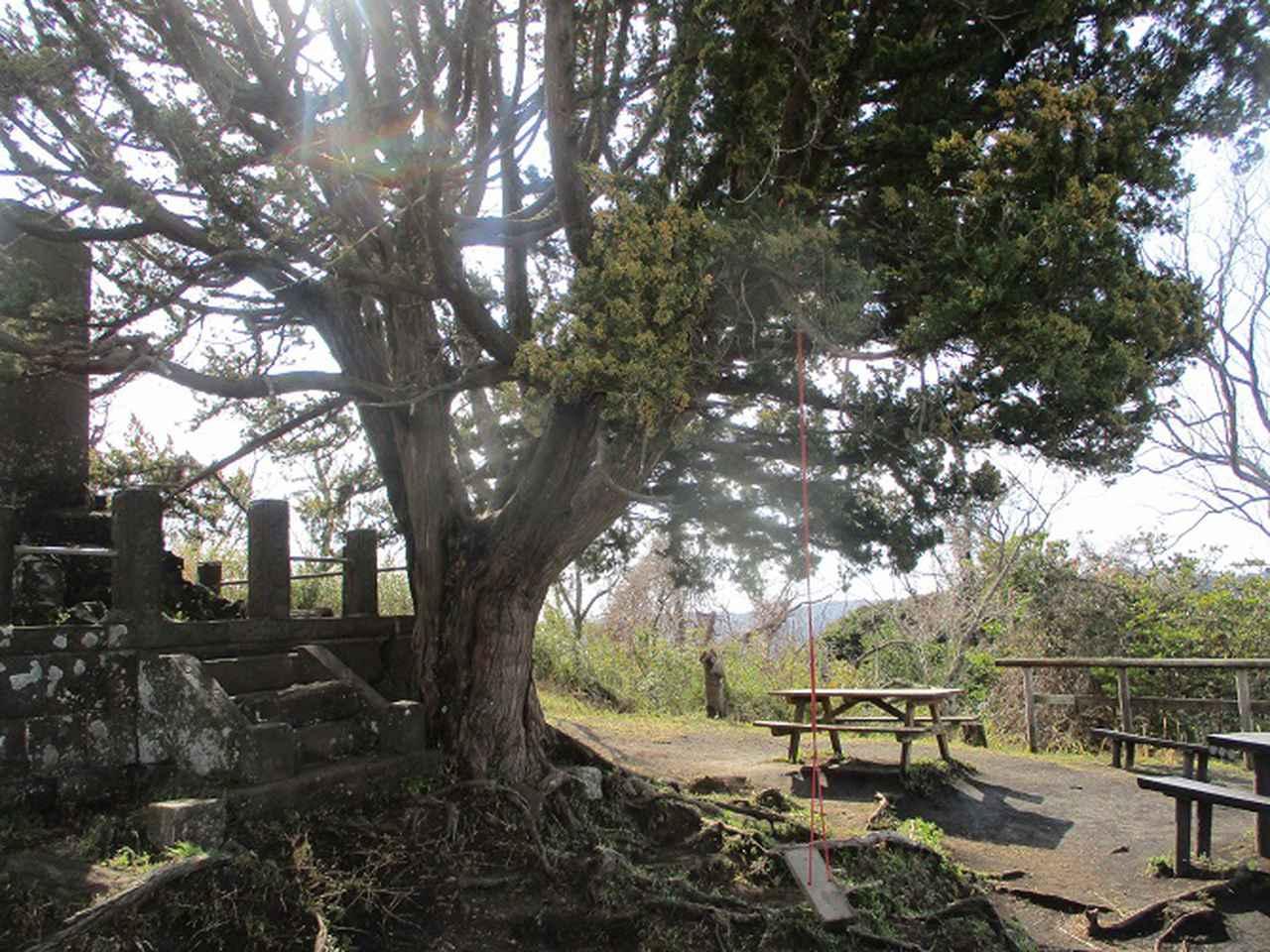 画像2: 2月22日に山旅会 仙元山から茅塚 ツアーに行ってきました!