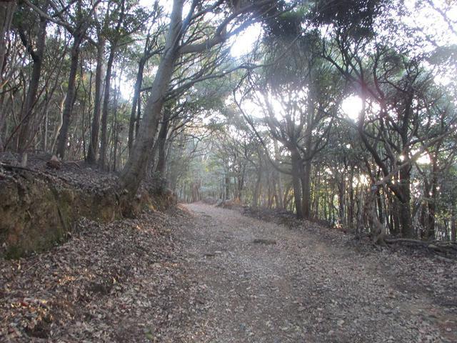 画像2: 3月の山旅会 神石山 の下見に行ってきました!