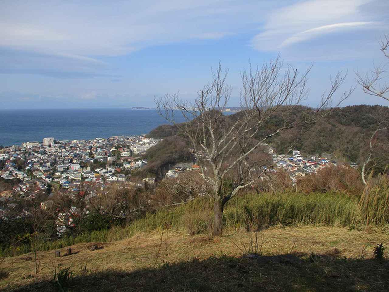 画像1: 2月22日に山旅会 仙元山から茅塚 ツアーに行ってきました!