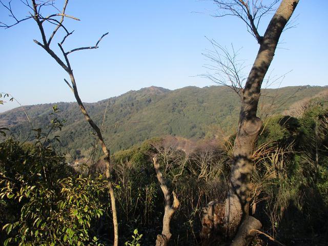 画像4: 3月の山旅会 神石山 の下見に行ってきました!