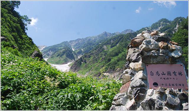 画像: 白馬岳