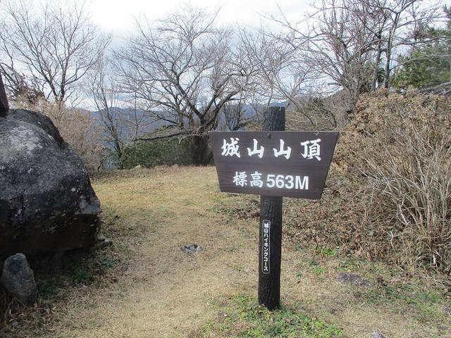 画像10: 2月28日に山旅会 湯河原城山 ツアーに行ってきました!