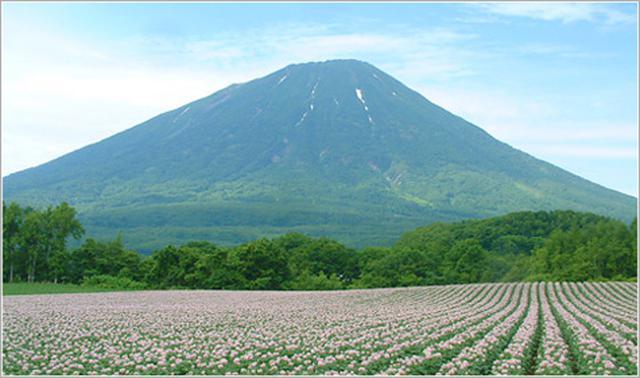 画像: 後方羊蹄山【しりべしやま】北海道
