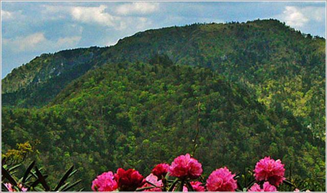 画像: 大峯山【おおみねさん】奈良県|百名山に登ろう!|クラブツーリズム