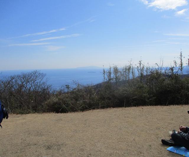 画像11: 2月28日に山旅会 湯河原城山 ツアーに行ってきました!