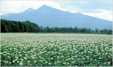 画像: 斜里岳【しゃりだけ】北海道