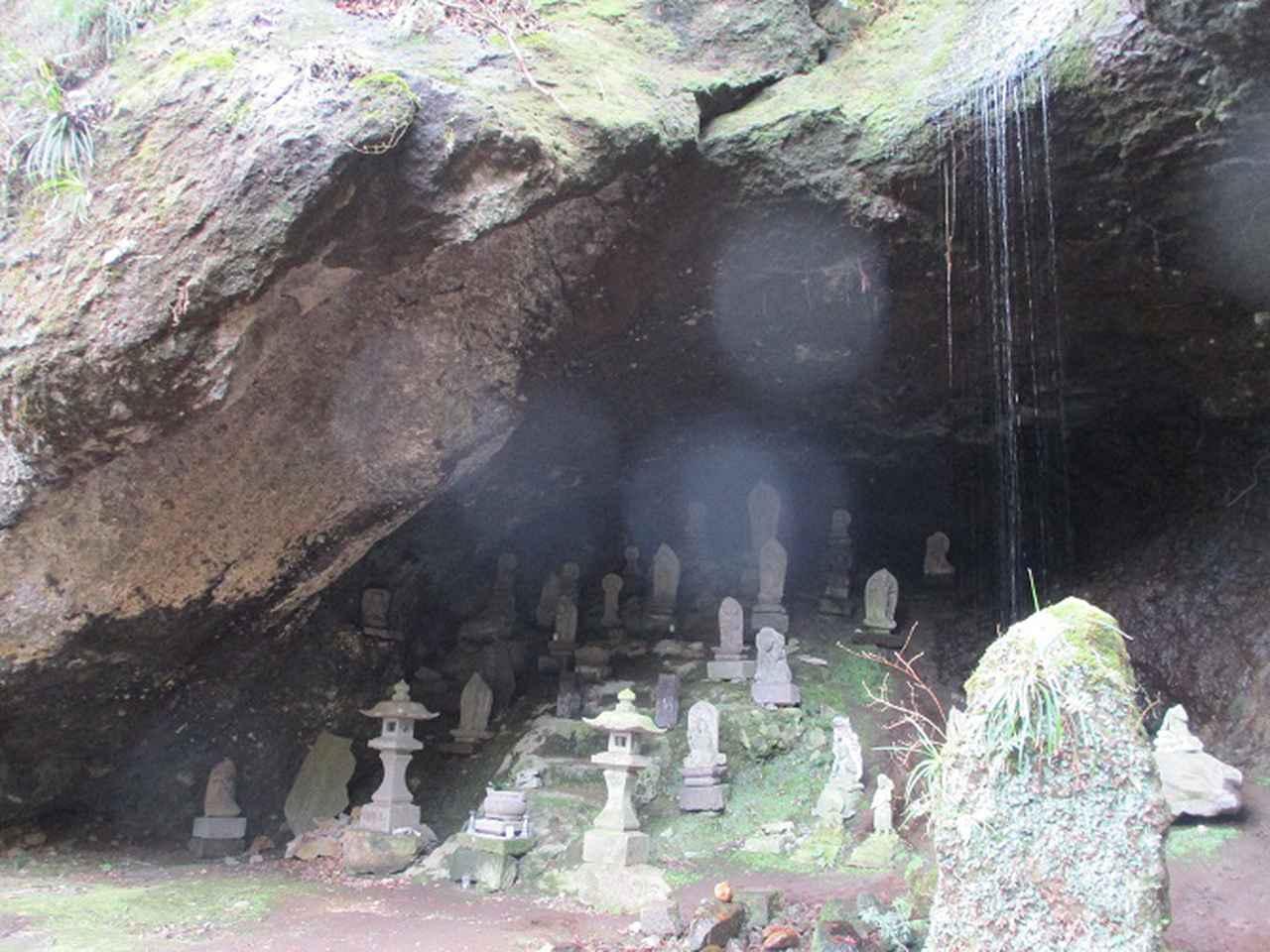 画像5: 2月28日に山旅会 湯河原城山 ツアーに行ってきました!