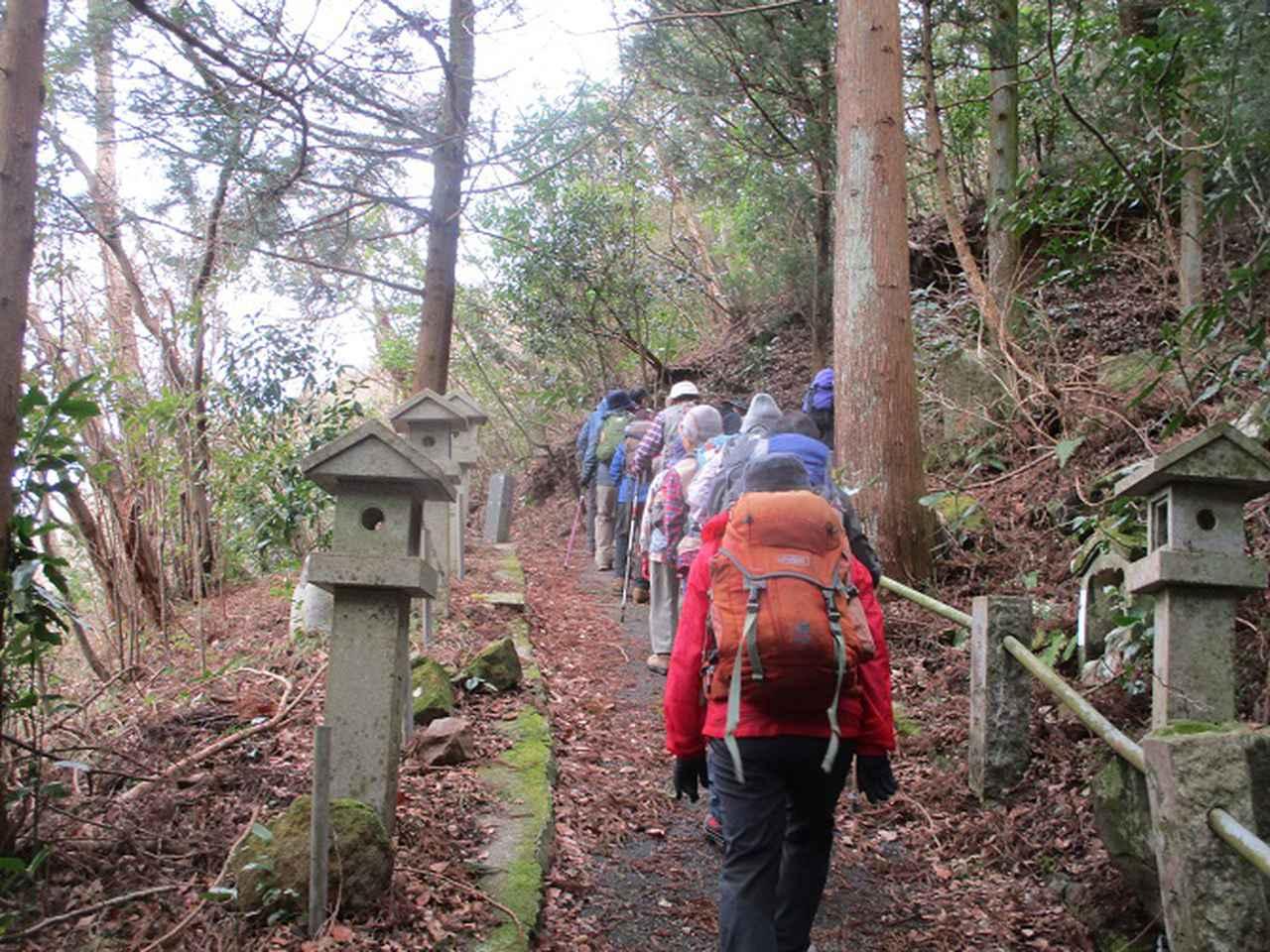 画像6: 2月28日に山旅会 湯河原城山 ツアーに行ってきました!