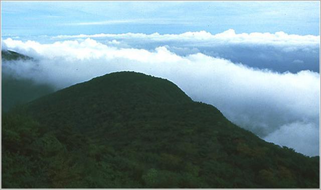 画像: 天城山【あまぎさん】静岡県